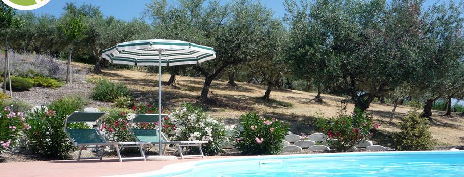 Our Abruzzo Garden – Take It Or Leaf It !