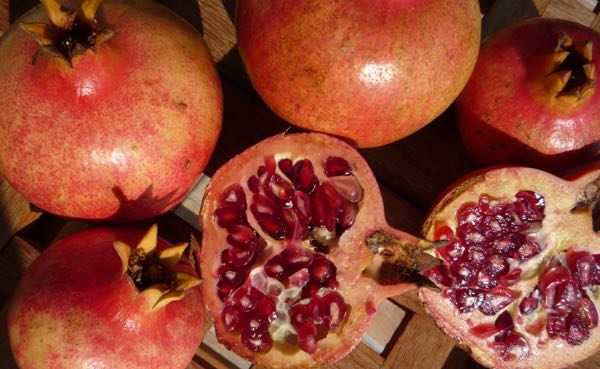 Pomegranates are great to look at - but better to eat !