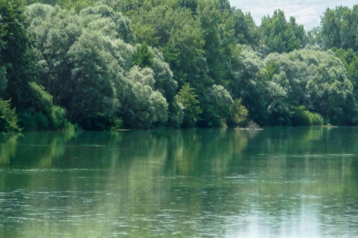 Lake Serranella. Our own local Nature Reserve